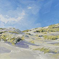 zonnige-duinen-bij-schoorl---robdonders-art